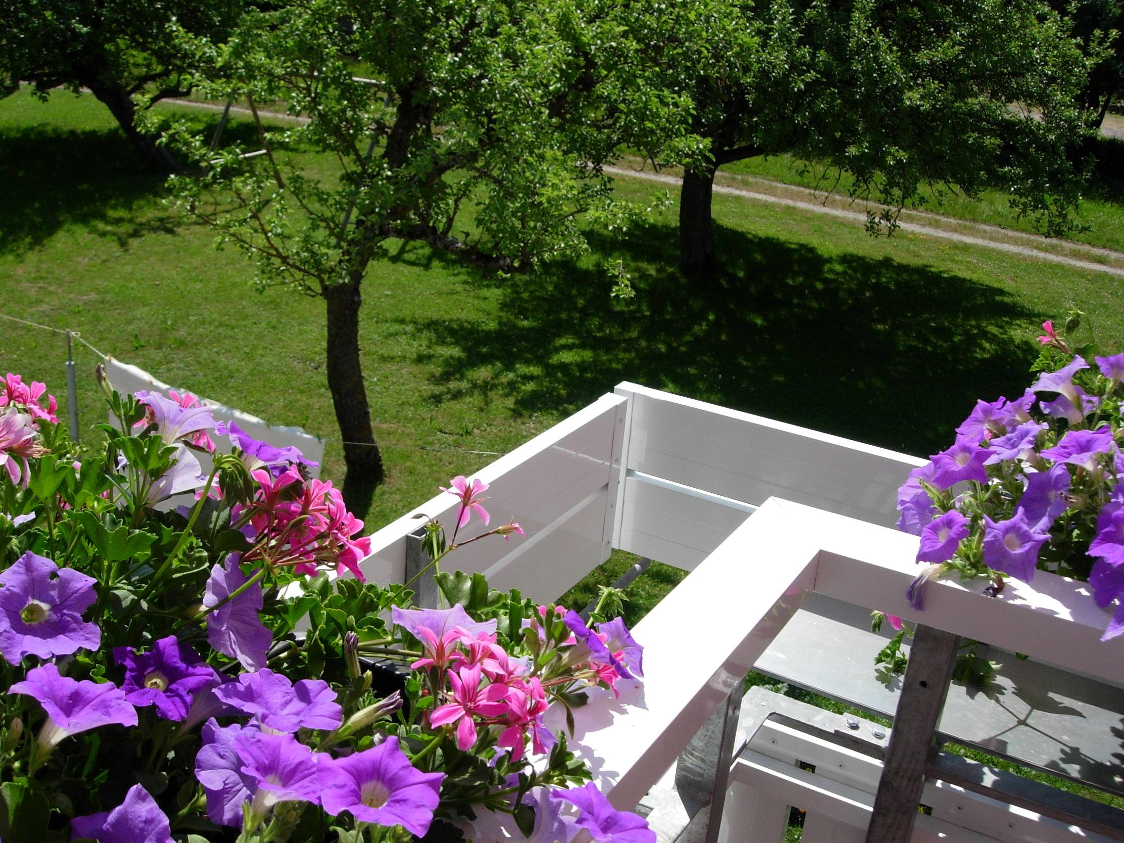 Blumenbrett von der Balkon Innenseite gesehen.